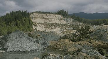Environmental Torts
